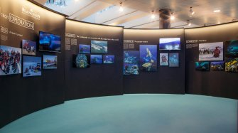 Blancpain Ocean Commitment exhibition in Zurich Exhibitions