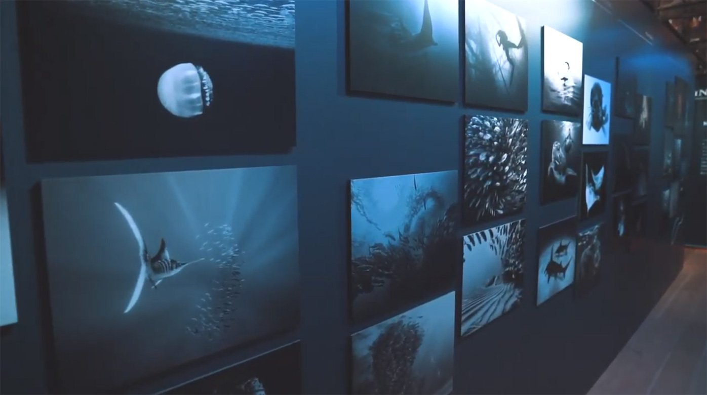 Blancpain - Ocean Commitment Exhibition