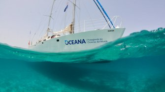 Exclusive Partnership With Oceana Trends and style