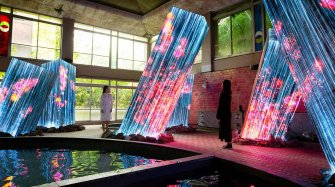 Collaboration with teamLab Arts and culture